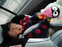 my child in PRIUS(10)