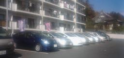 南向き駐車のプリウス達