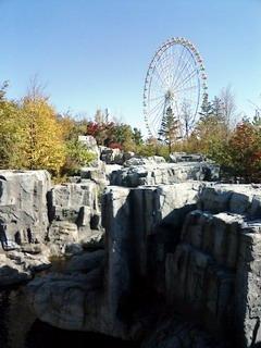 吊橋と観覧車