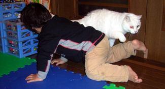 逃げる白猫