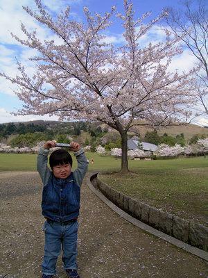桜とトレインペン