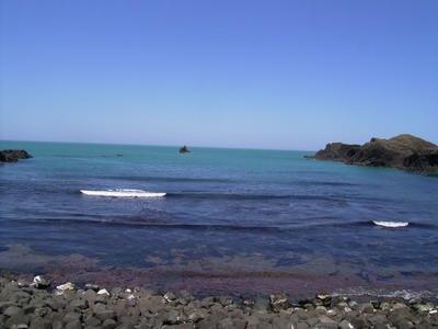 越前松島の海