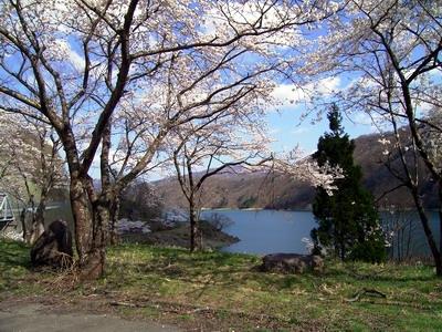 九頭竜湖にて